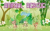 Играть онлайн Спасение животных бесплатно