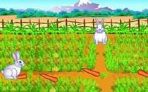 Играть онлайн Кролики и зайцы едят морковку бесплатно