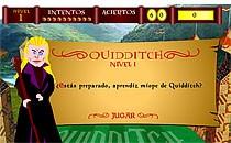 Играть онлайн Гарри Поттер Квиддич бесплатно