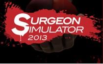 Играть онлайн Скачать симулятор хирурга 2013 торрент бесплатно