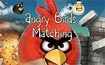 Играть онлайн Энгри бердс: Двойные птички бесплатно